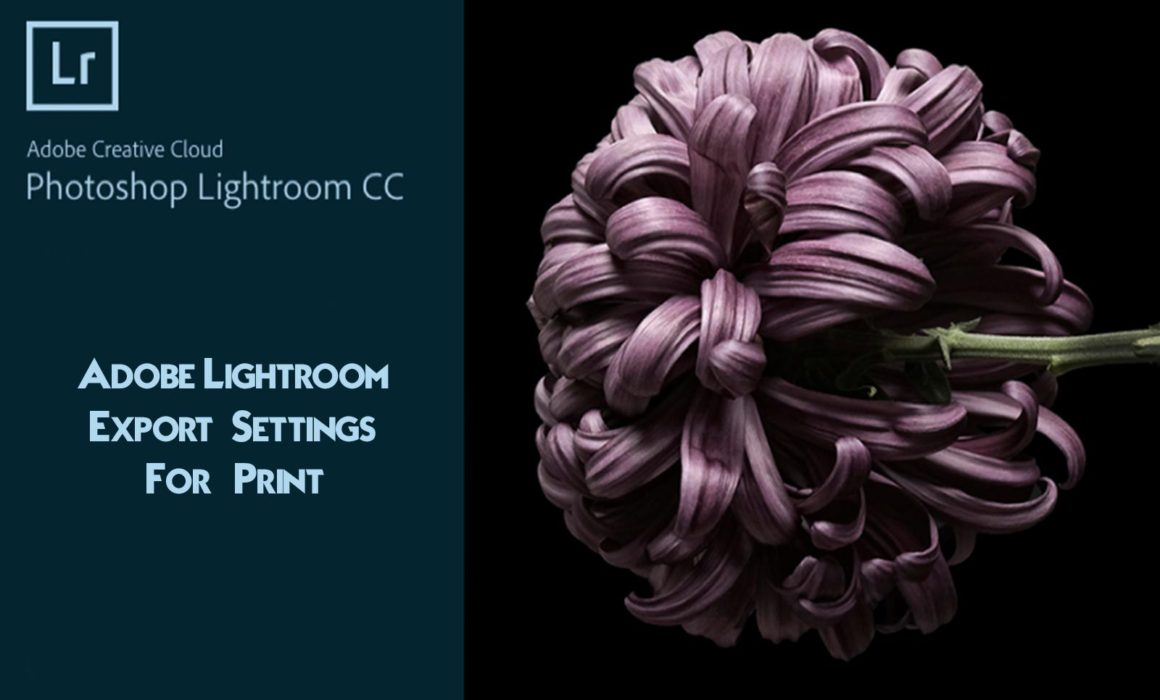 Lightroom Export Settings For Print Guide Photographyaxis