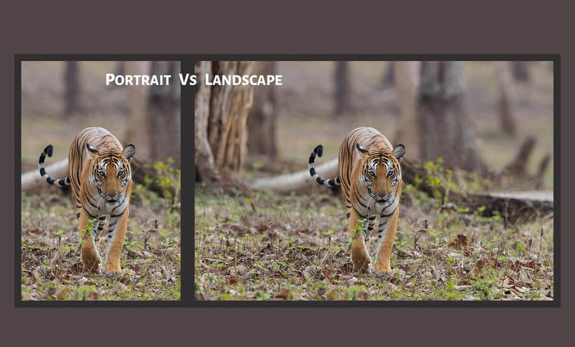 Portrait Vs Landscape shooting modes