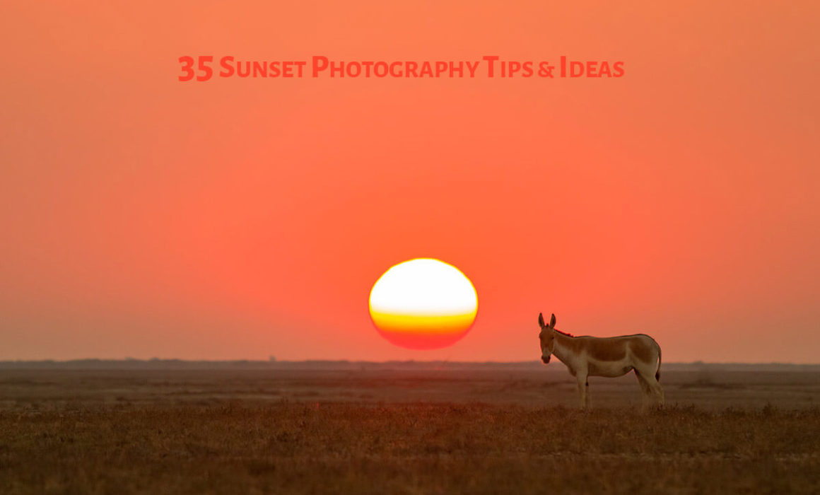 Sunset Photography Tip6
