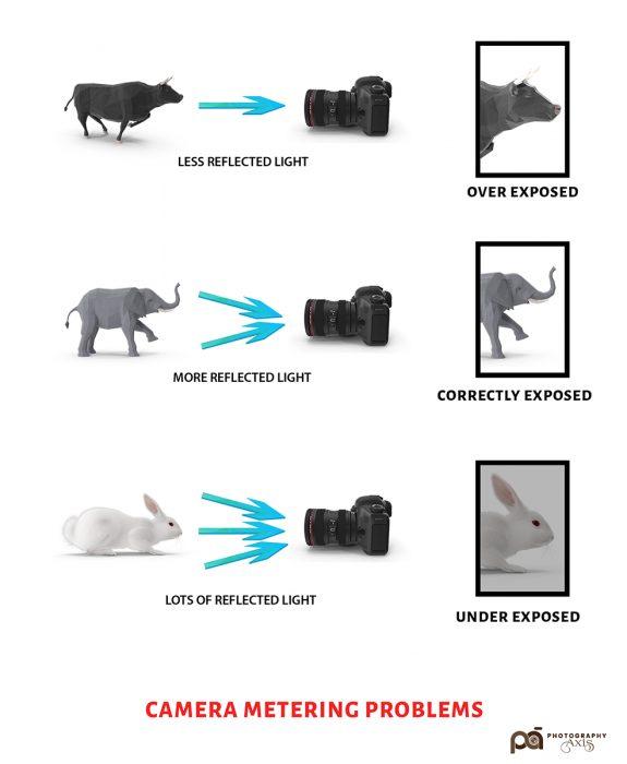 Camera Metering-Problems