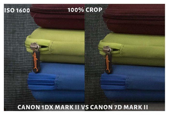 ISO 1600 CROP
