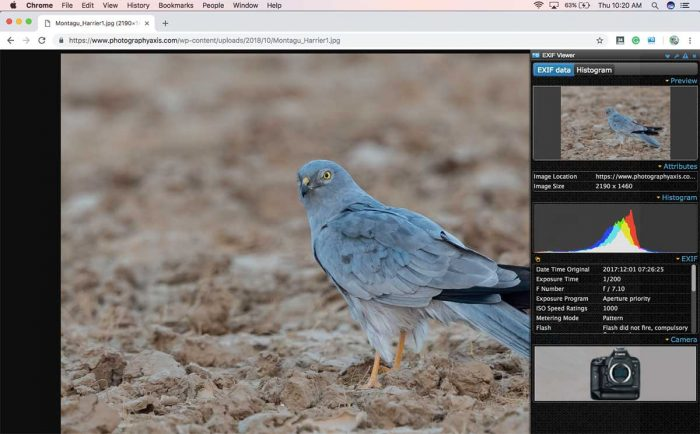 EXIF Data Viewer Google Chrome Plugin