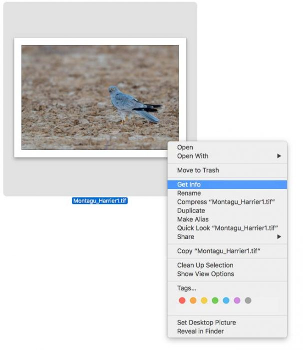 MAC-OS-EXIF-Data-Viewer