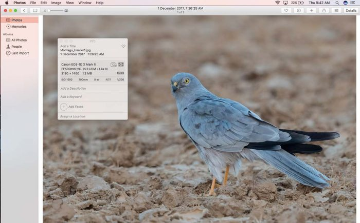Photos MacOS Photo Viewer
