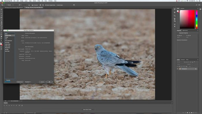 Adobe Photoshop EXIF Viewer Option