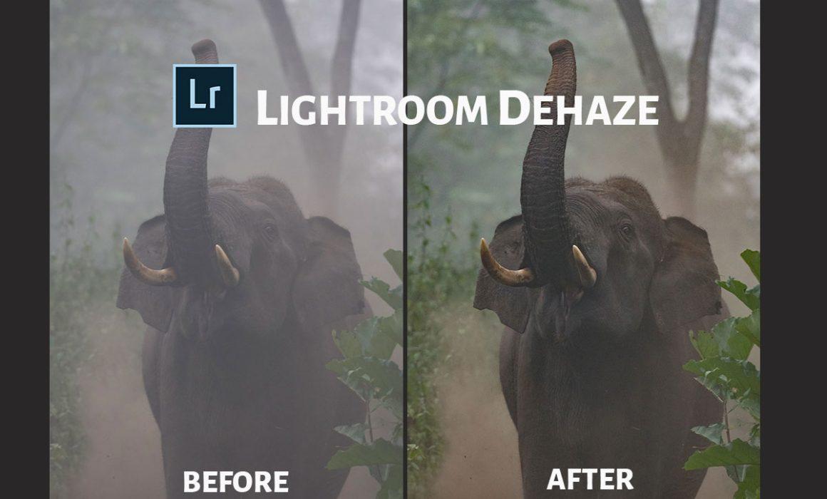 Lightroom Dehaze