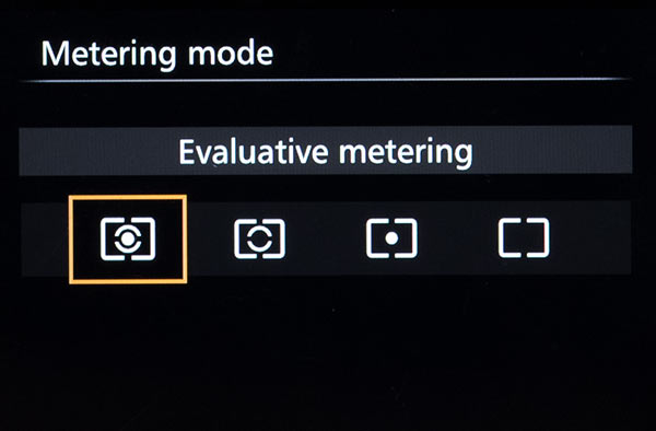 Camera Metering Selection