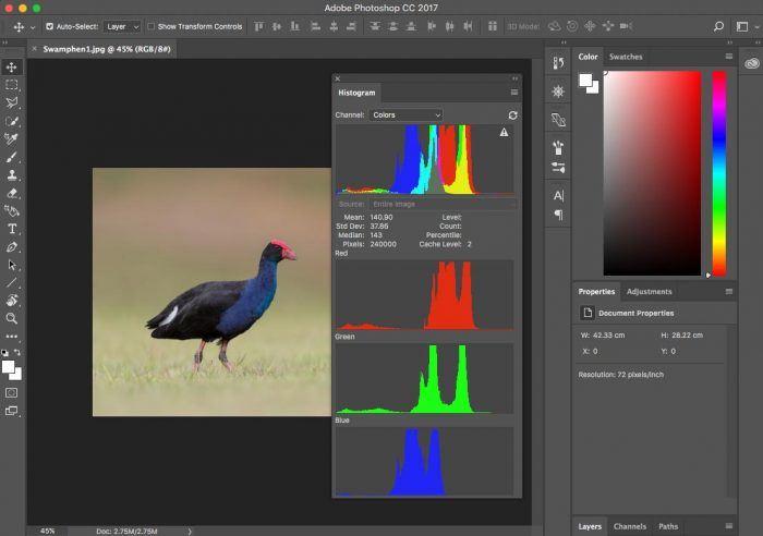 Histogram of an Image in Adobe Photoshop