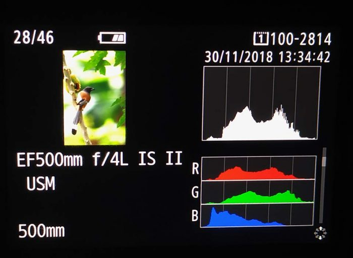 Histogram of an Image in Camera