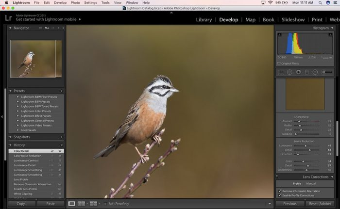 How to sharpen photos in Lightroom