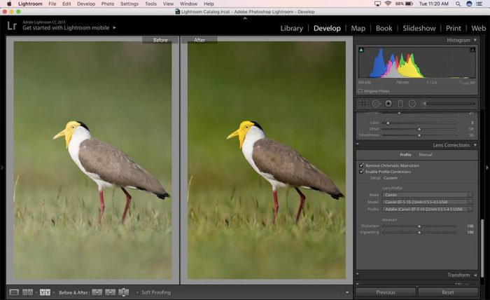 Lightroom Before and After : Left/Right View