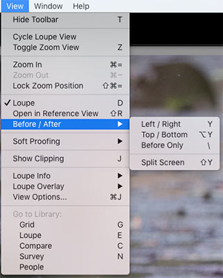 Lightroom before After options in Toolbar