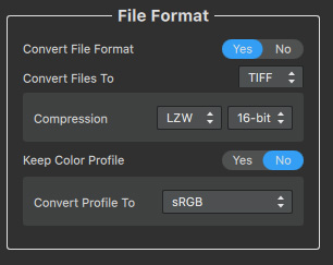 AI Gigapixel File Format Option