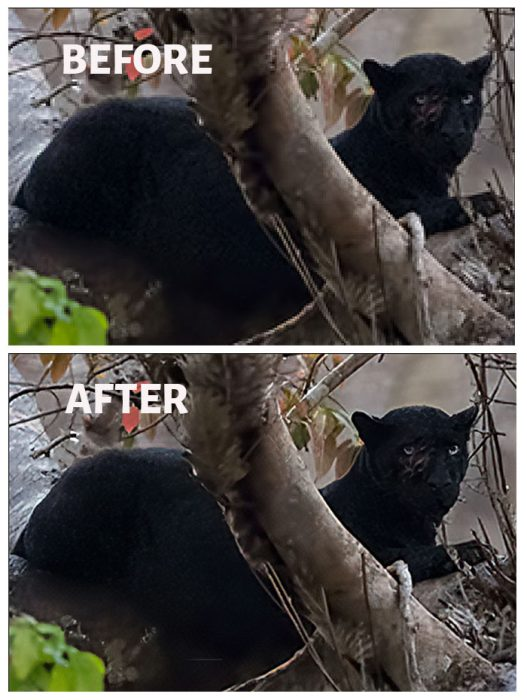 AI Gigapixel Before After