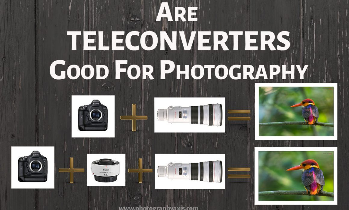 Teleconverters for Photography