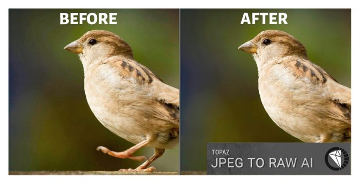 Topaz JPEG to RAW AI Before After