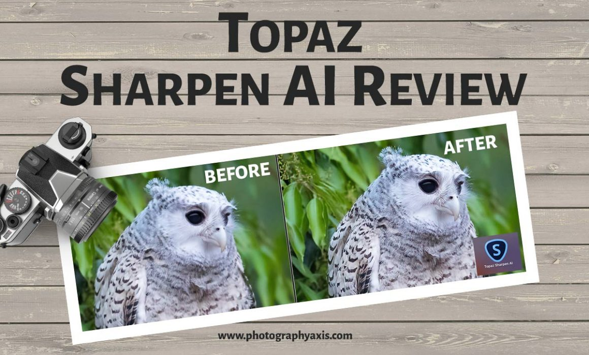 Topaz Sharpen AI Before After
