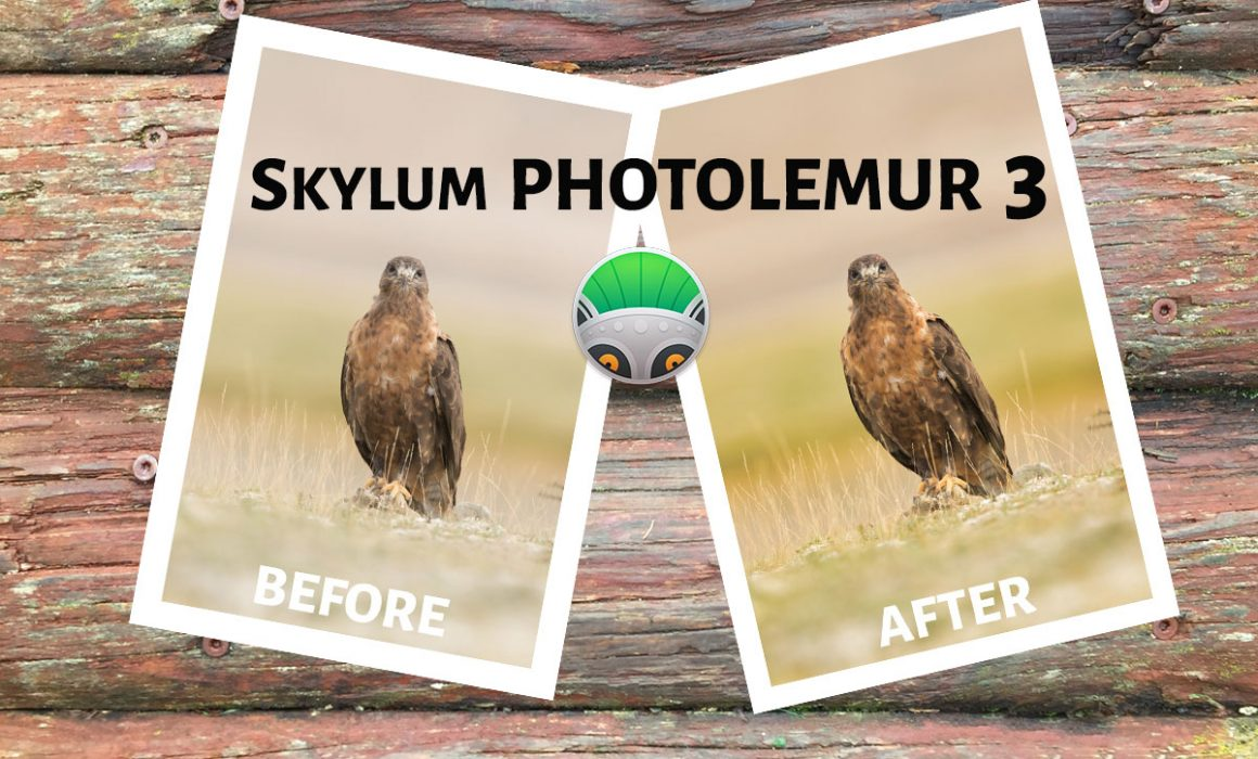 Skylum Photolemur 3 Review