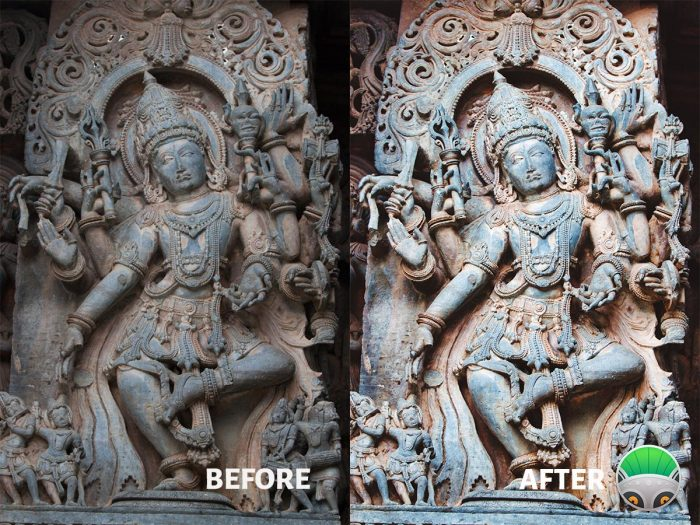 PhotoLemur Before and After Image