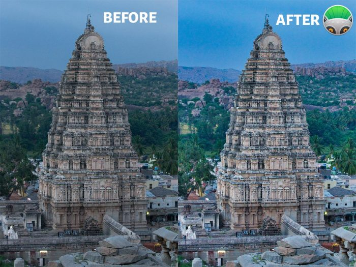 PhotoLemur 3 Before and After Image
