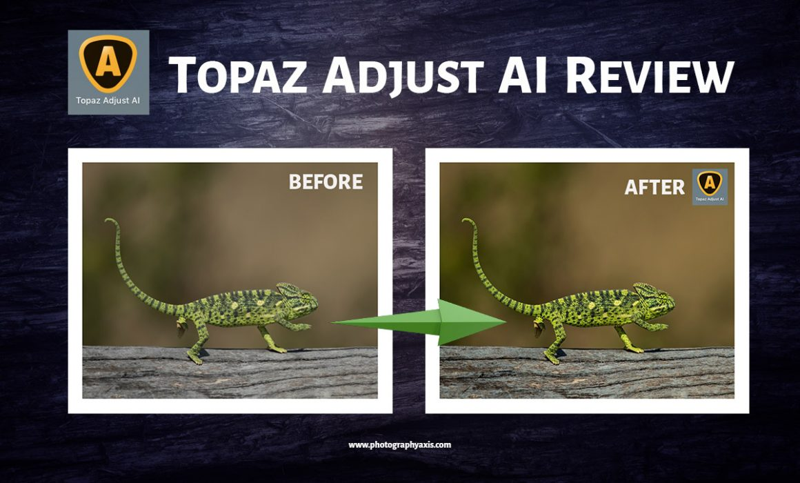 Topaz Adjust AI Review