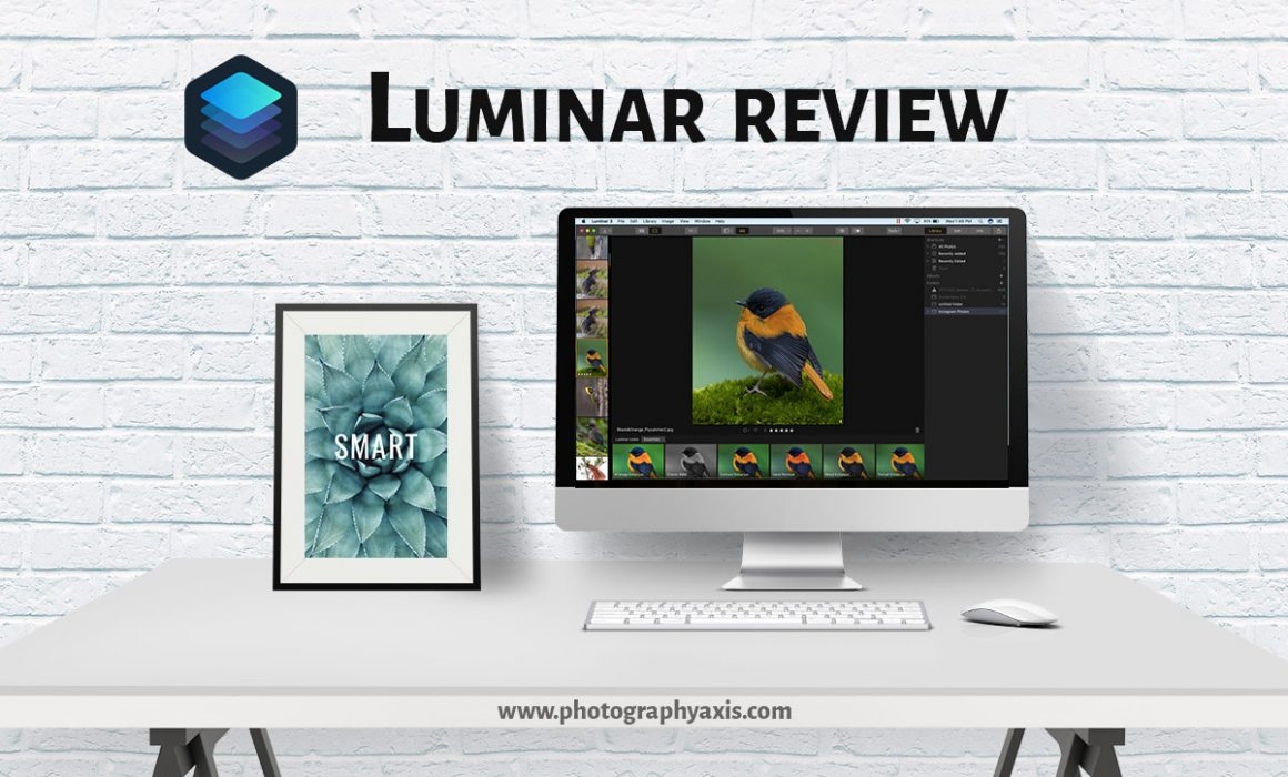 Luminar 3 Review- Is it a Good Lightroom Alternative