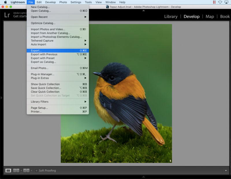 Lightroom to Instagram Export