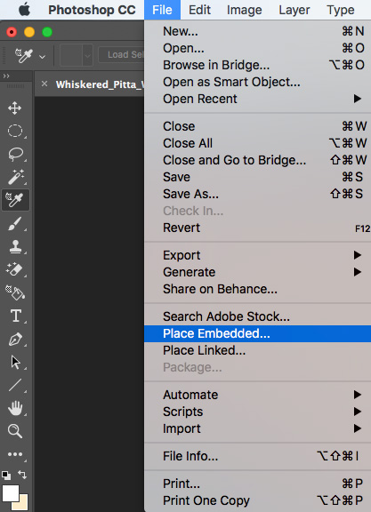Adobe Photoshop File Options
