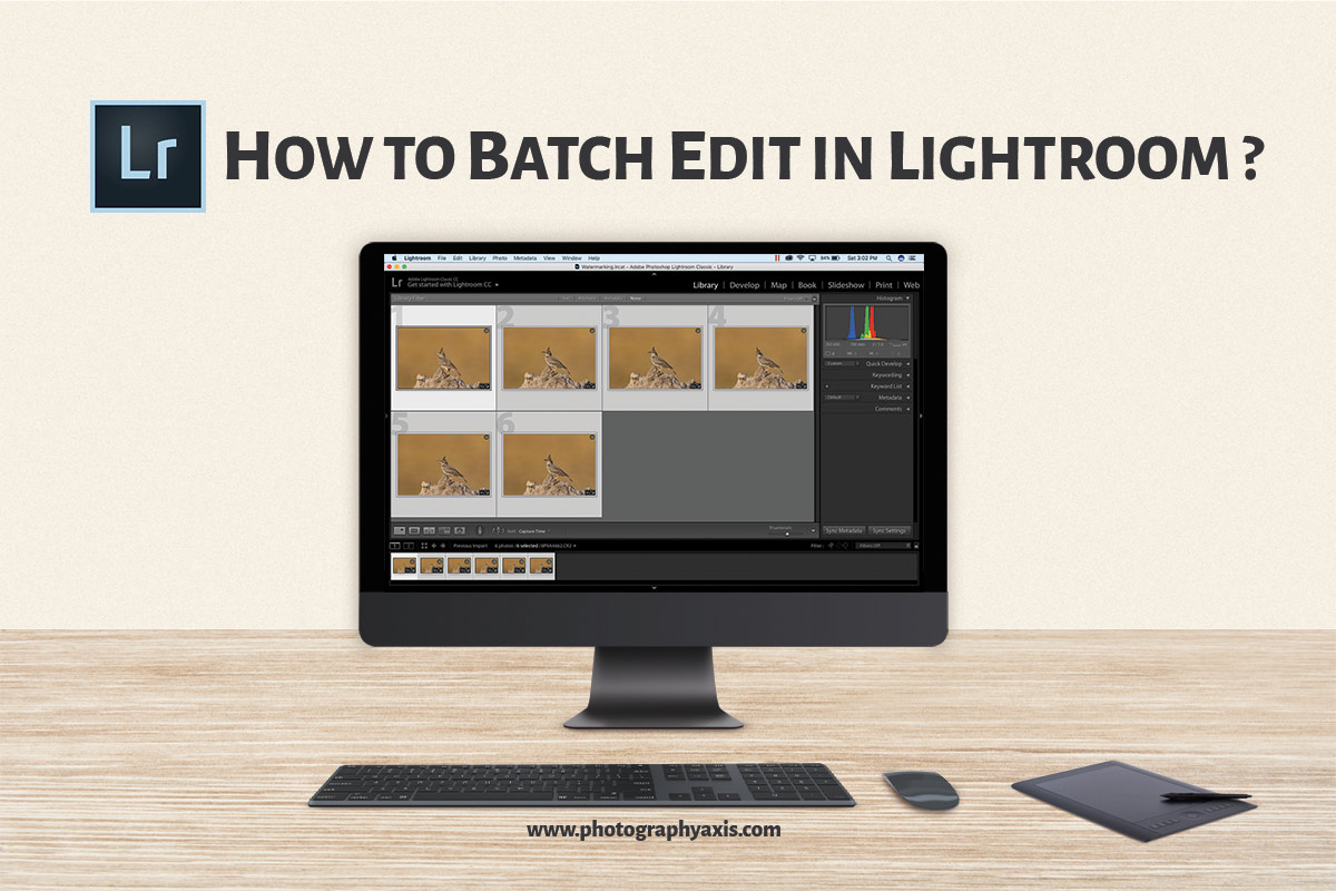 How To Batch Edit In Lightroom Photographyaxis