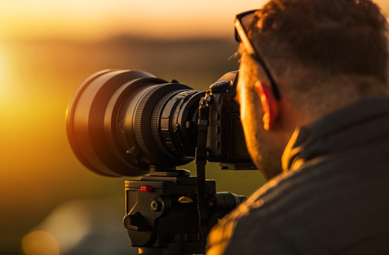 Raptor Photography Tips