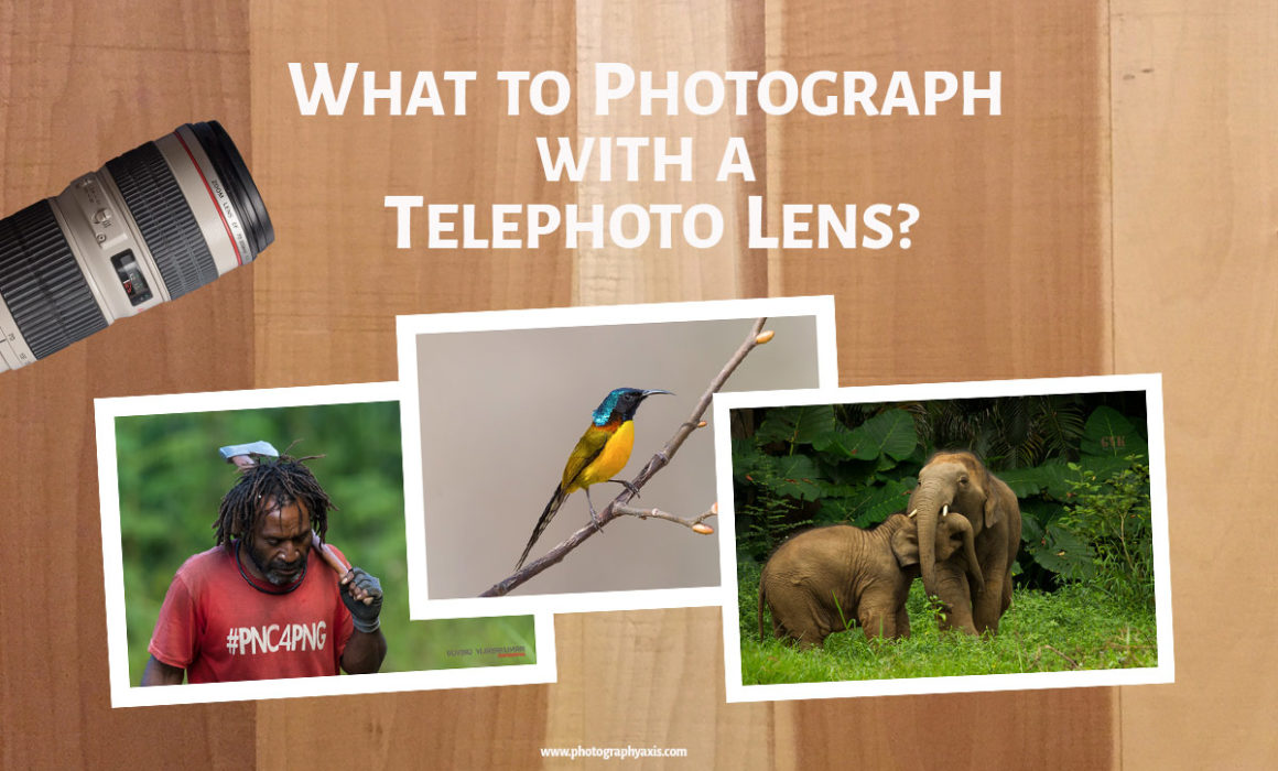 What to Photograph with a Telephoto Lens