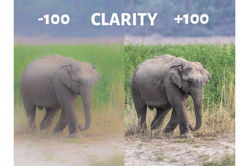 Clarity Slider in Lightroom- -100 and +100