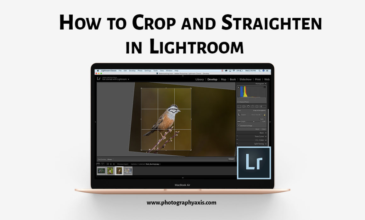 How to crop and straighten in Lightroom