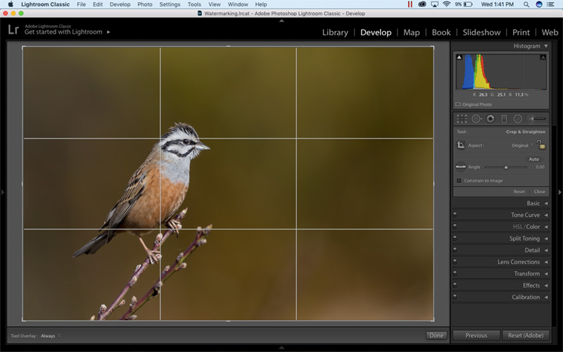 How to crop in lightroom