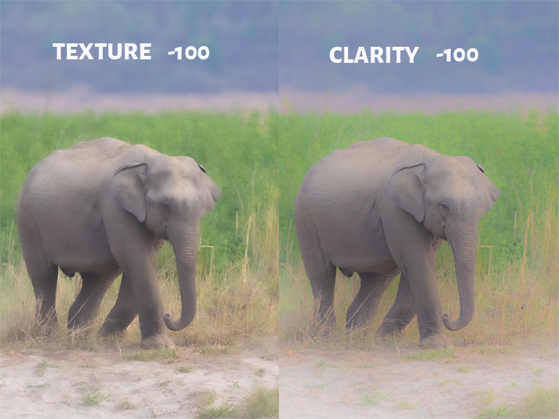Texture Vs Clarity at -100