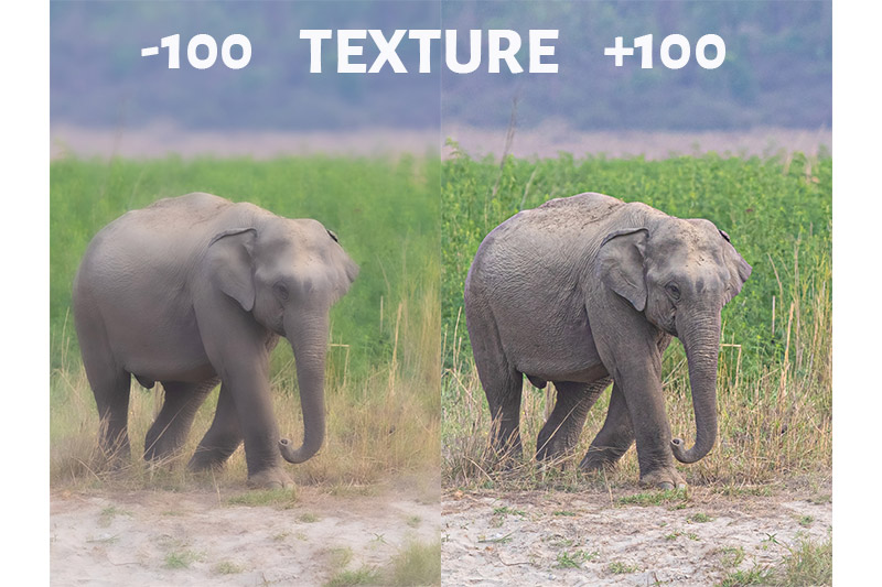 Texture Slider in Lightroom- -100 and +100