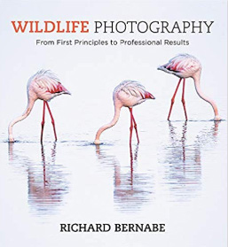 Wildlife-Photography-Book-Richard-Bernabe