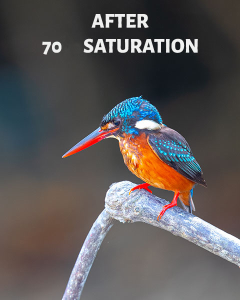 After 70 Saturation