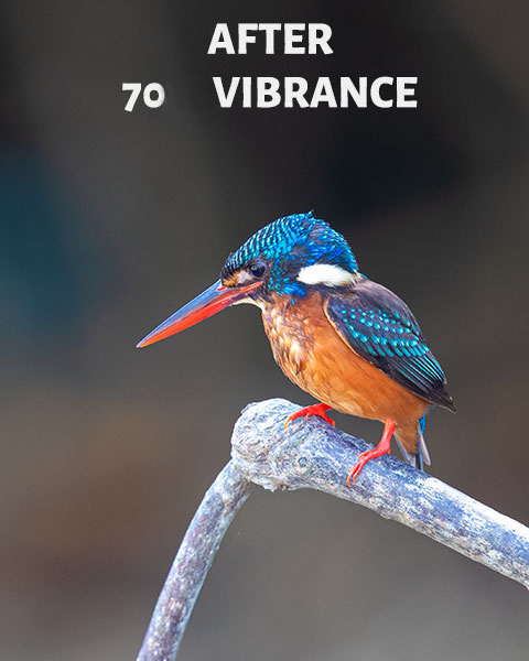 After 70 vibrance