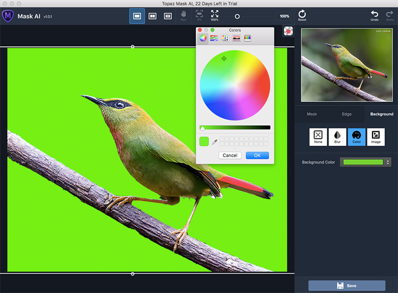 Background Color in Topaz Mask AI