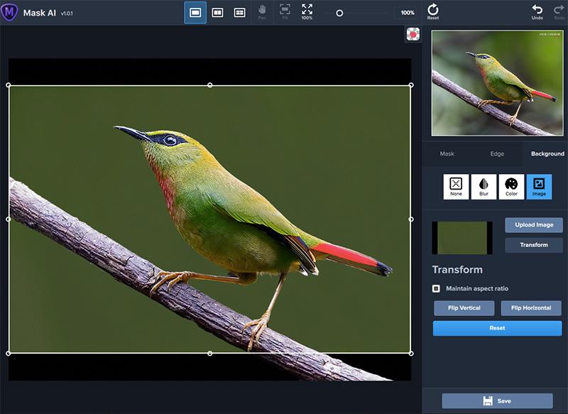 Background Image Option in Topaz Mask AI