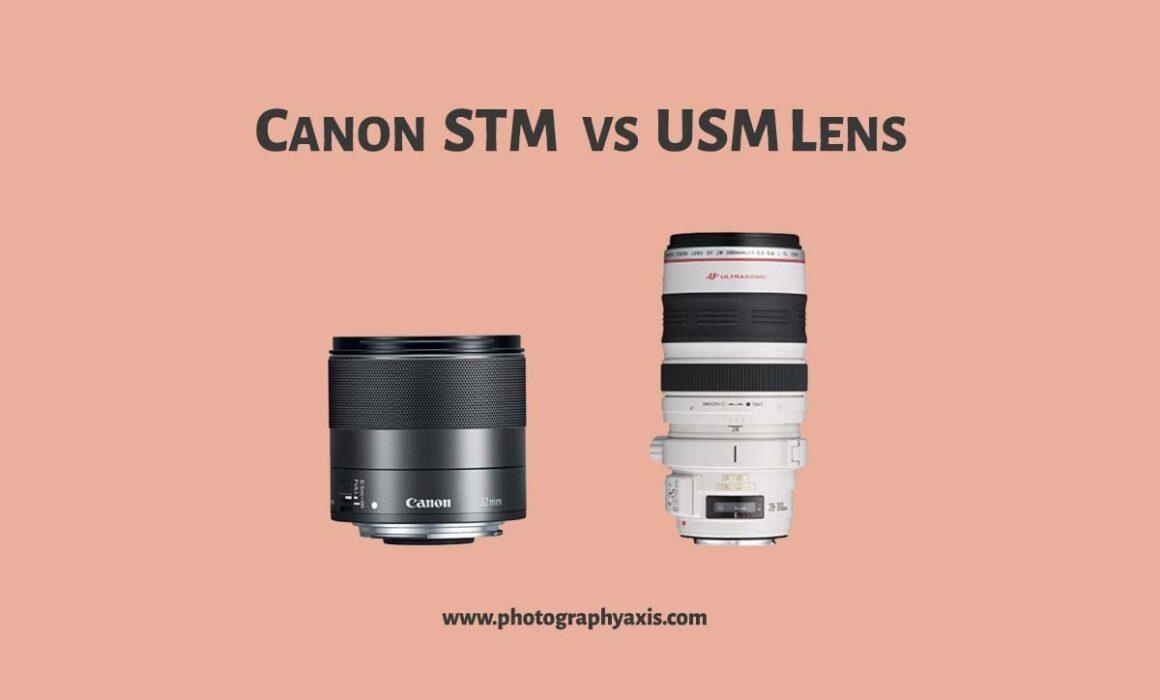 Canon STM VS USM Lens