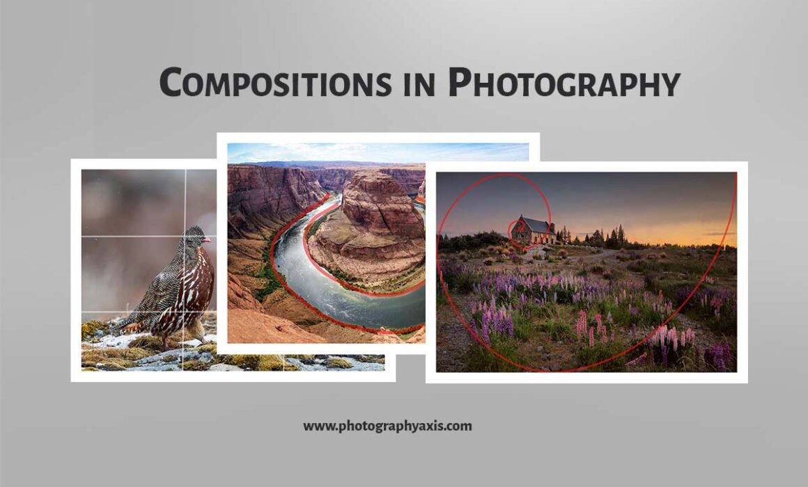 Compositions in Photography