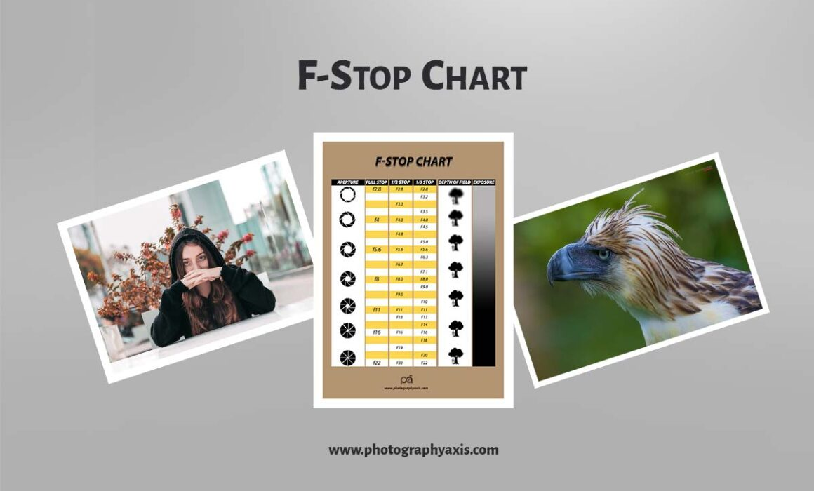 F STOP CHART EXPLAINED