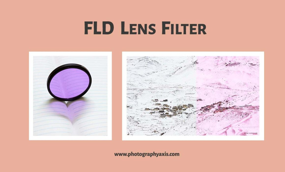 FLD Filter Photography