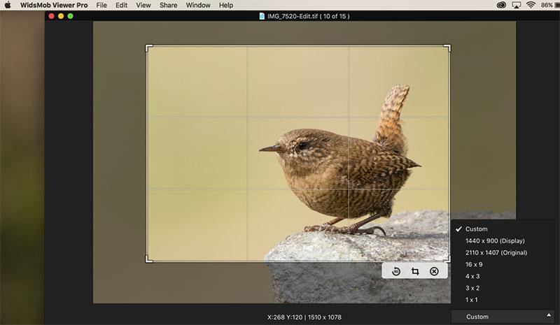 Image Crop WidsMob Viewer Pro