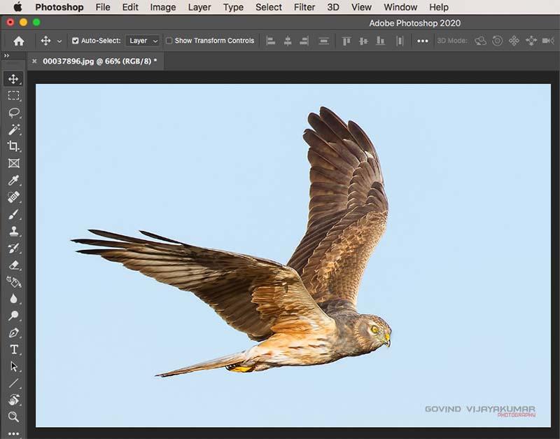 Image Open Photoshop
