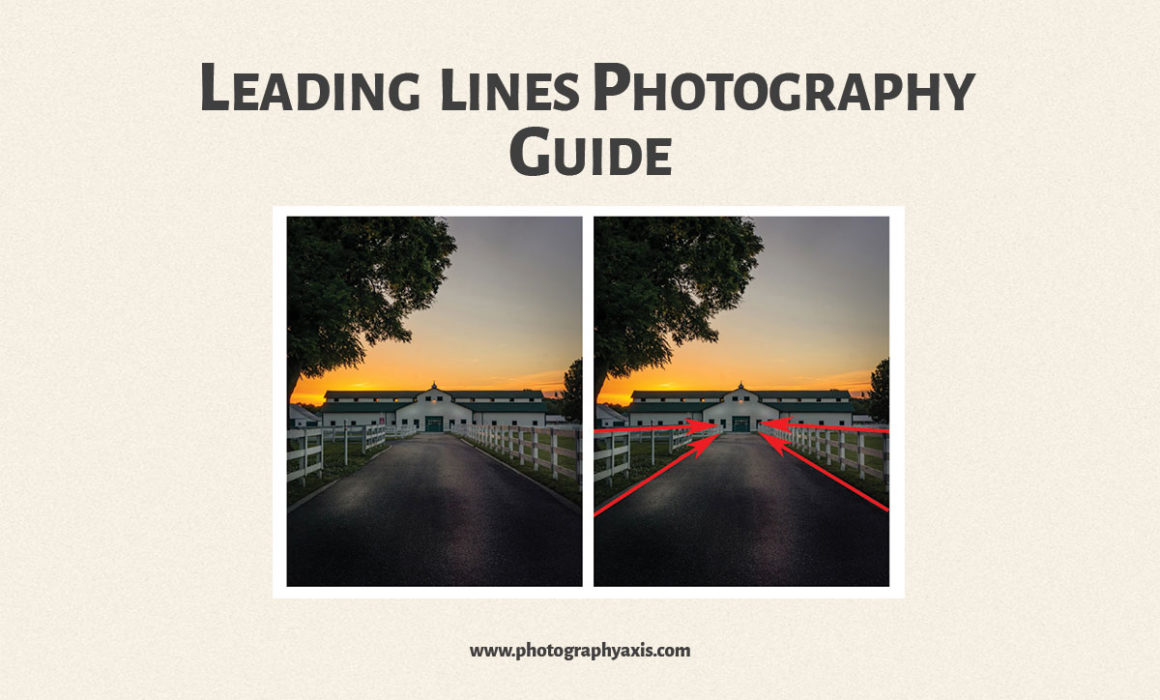 Leading Lines Photography Composition Guide