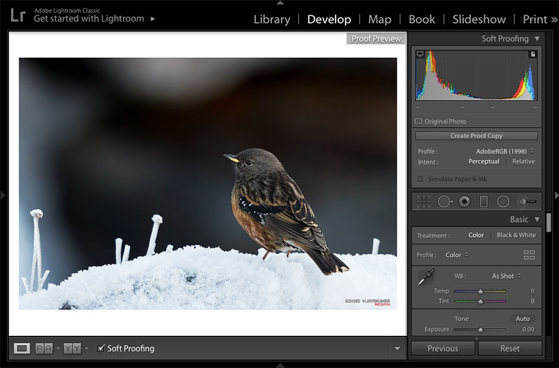 Lightroom Soft Proofing