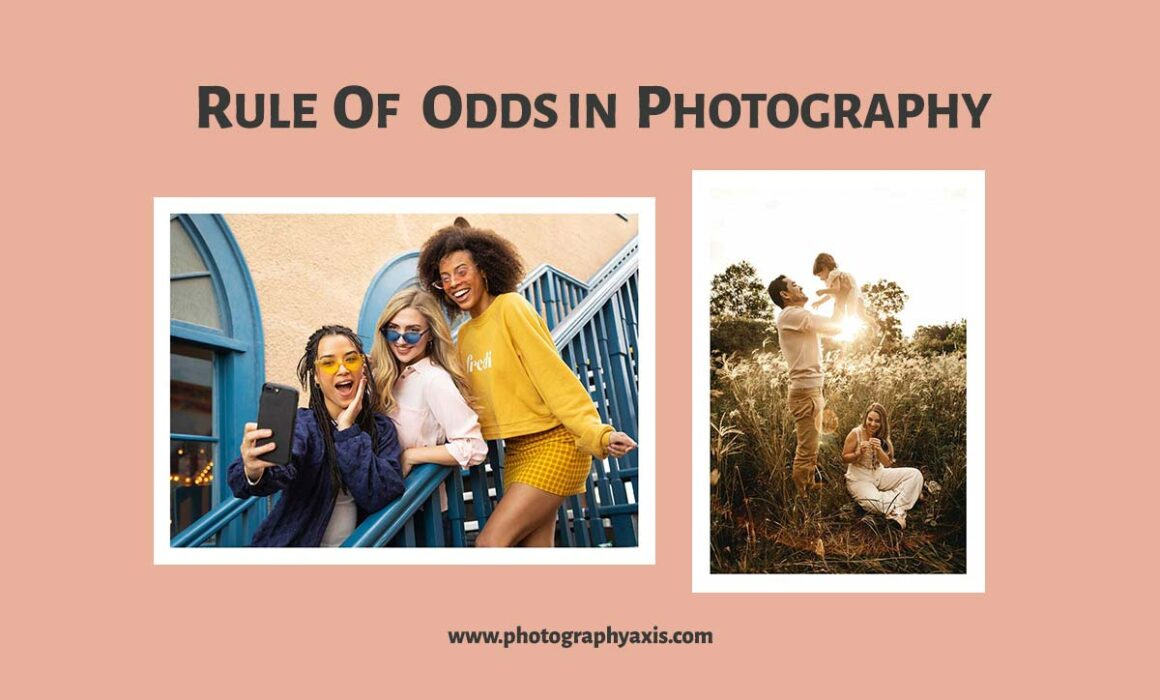 Rule of Odds Photography